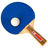 table tennis | ping-pong
